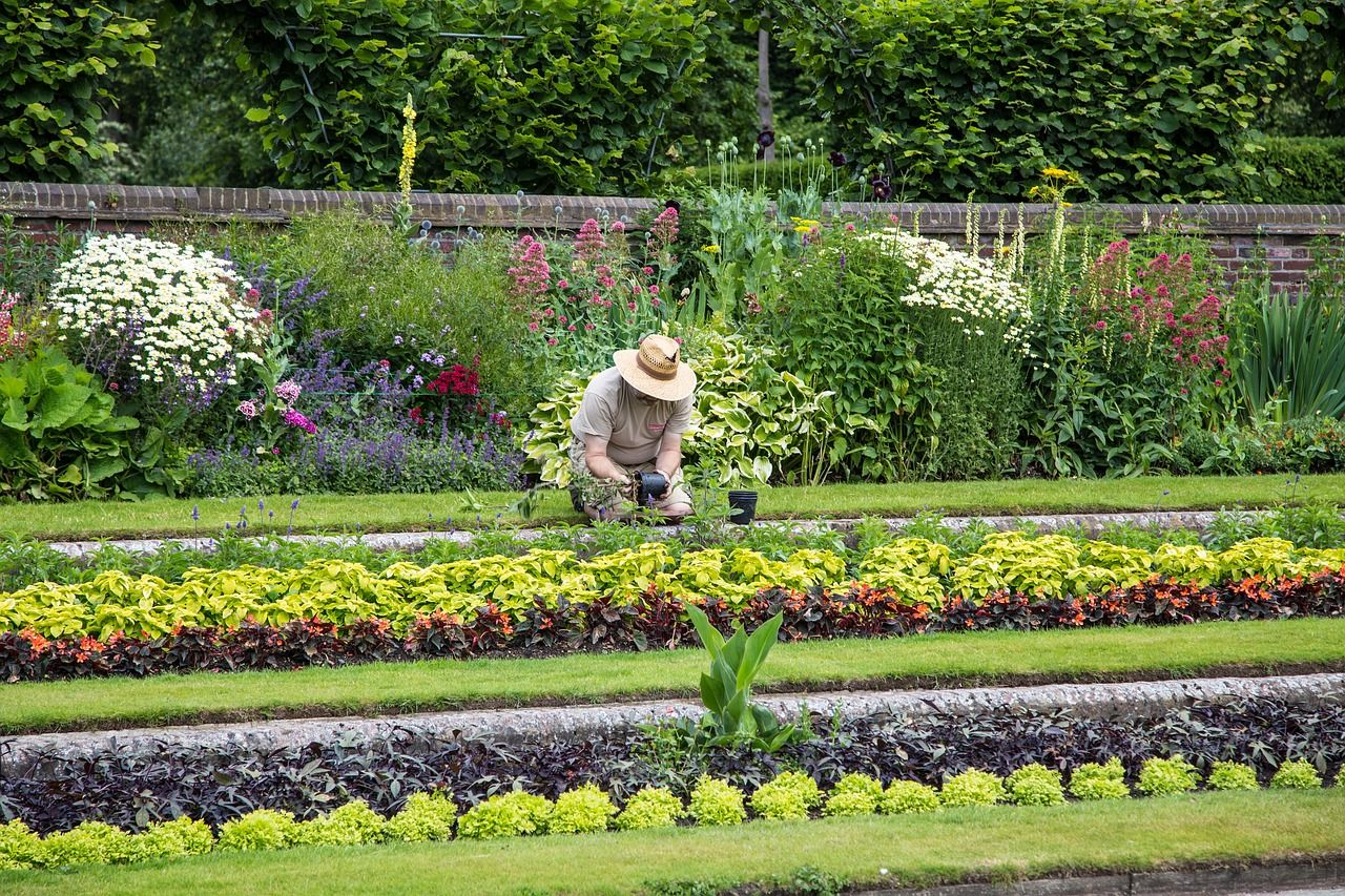 Prace ogrodowe, które trzeba wykonywać regularnie
