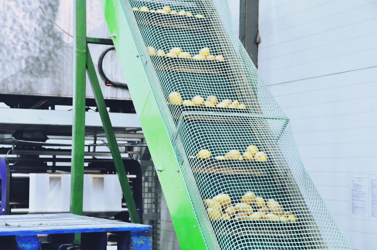 Jakimi sposobami dokonuje się kontroli i eliminuje zagrożenia na etapach produkcji żywności?